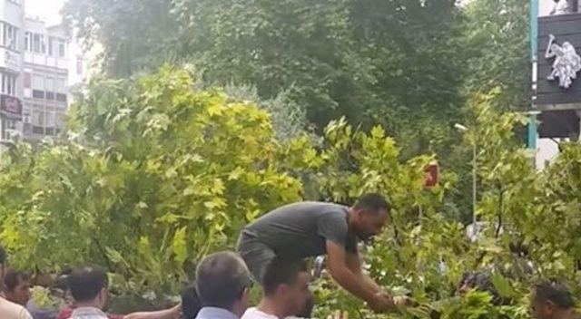 Kocaeli'de fırtına: Devrilen ağacın altında kaldı