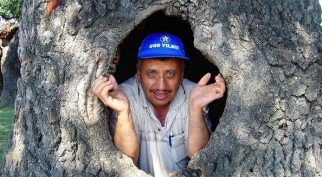 Kütahya'da 400 yıllık gövdesi boş meşe ağacı ilgi odağı