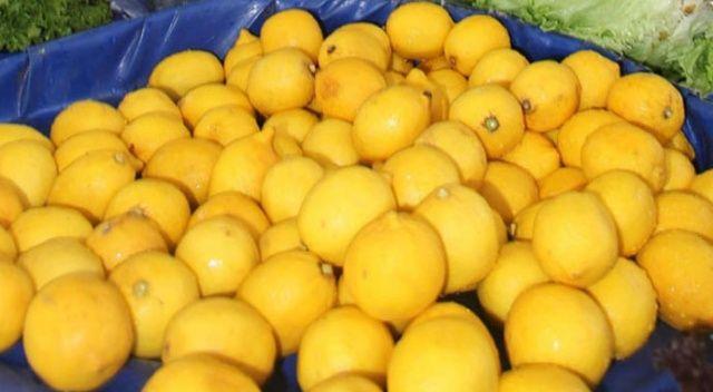 Yüzde 30'u depoda çürüyen limon, 12 TL'ye dayandı!