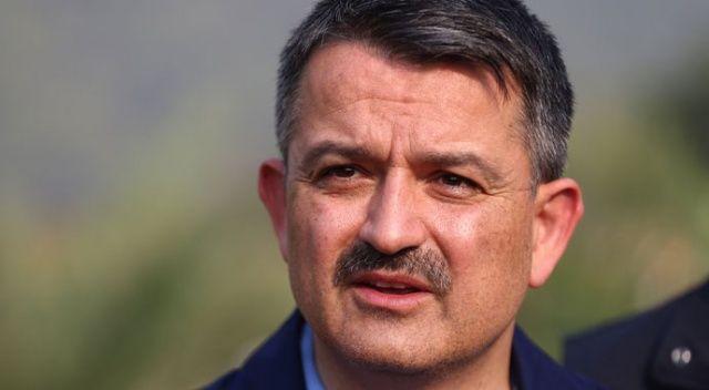 Bakan Pakdemirli'den Muğla'daki orman yangını hakkında açıklama