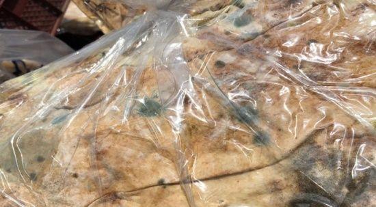 Mide bulandıran olay! Küflü ekmekleri vatandaşa yedireceklerdi