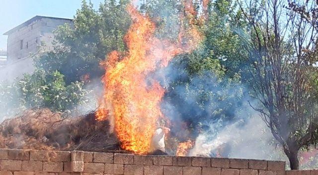 Akçakale'de odunlukta çıkan yangın korkuttu