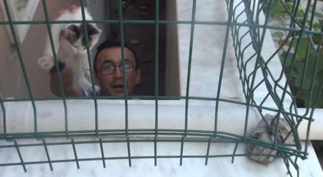 Apartman boşluğuna düşen yavru kedi, mahalleliyi seferber etti