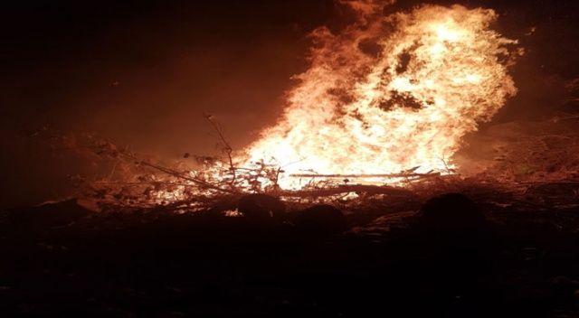 Bir yangın daha! 0.5 hektar kızılçam ormanlık alan küle döndü...