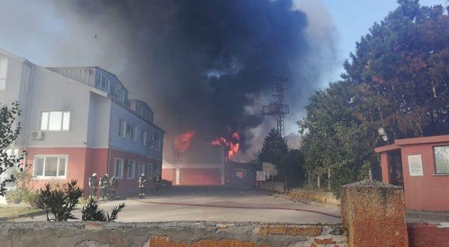 Gebze'de mesire alanındaki yangın, fabrikalara sıçradı