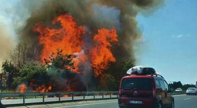 İstanbul - Tekirdağ yolundaki ağaçlık alanda büyük yangın