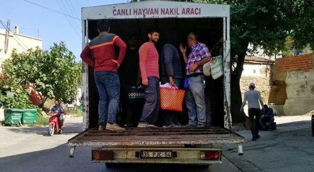 Kamyonet kasasında 23 işçi taşıyan sürücüye ceza