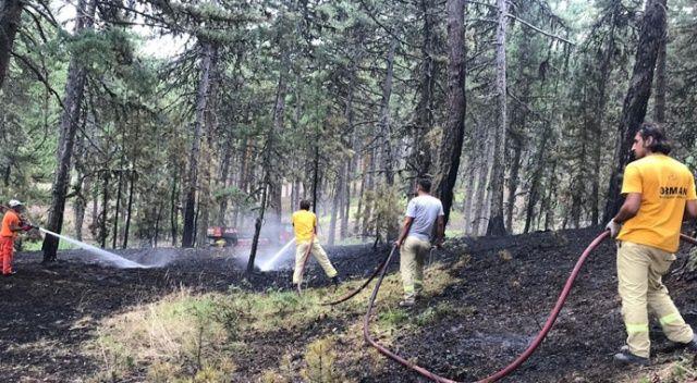 Kütahya'da orman yangını büyümeden söndürüldü