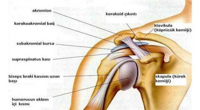 Omuz artroskopisi nedir? | Omuz artroskopisi ne kadar sürer? | Artroskopi'nin riskleri, tedavisi