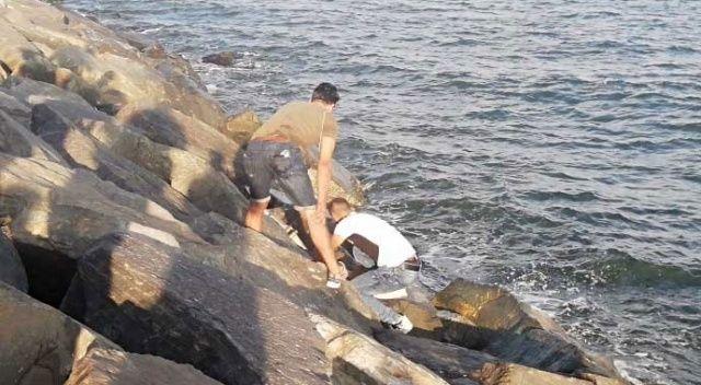 Avcılar'da kayalıklara sıkışan genç kurtarıldı