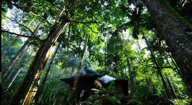 Endonezya'da orman yangınları hava kalitesini düşürdü