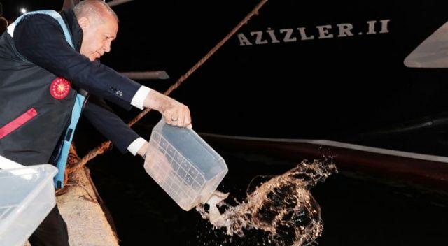 Erdoğan güvenli bölge için net konuştu: Kontrol bizde olacak, nokta!