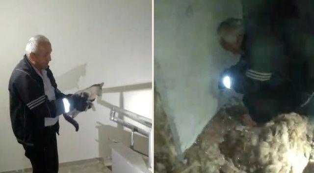 Havalandırma boşluğundaki kediyi duvarı kırarak kurtardılar