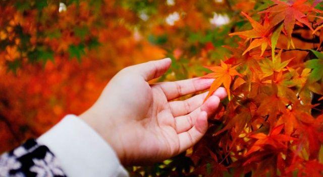 Sonbahar depresyonuna dikkat! (Belirtileri ve başa çıkma yöntemleri)