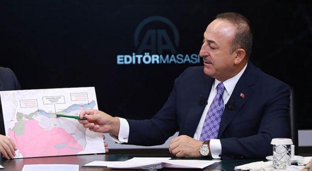 Bakan Çavuşoğlu: 'Terör devletinin kurulması engellendi'