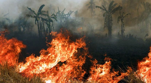 Endonezya'da yangın 60 aileyi evsiz bıraktı