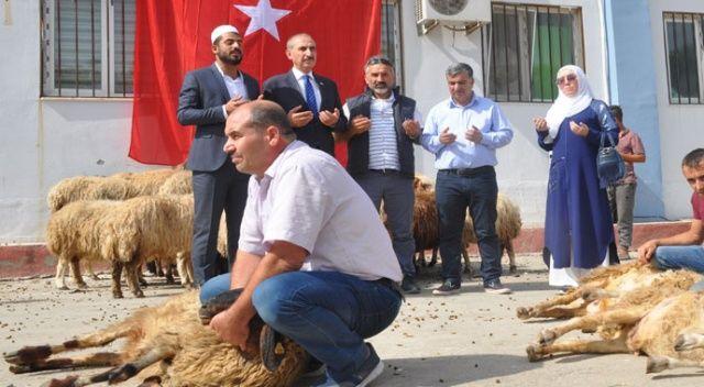 Mehmetçik için sınırda 50 kurban kesildi