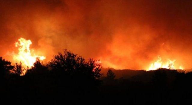 Hatay'daki orman yangını yayılıyor