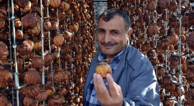 Kilosu 1 liradan satılan meyveyi, kurutarak 23 liradan piyasaya sunuyor!