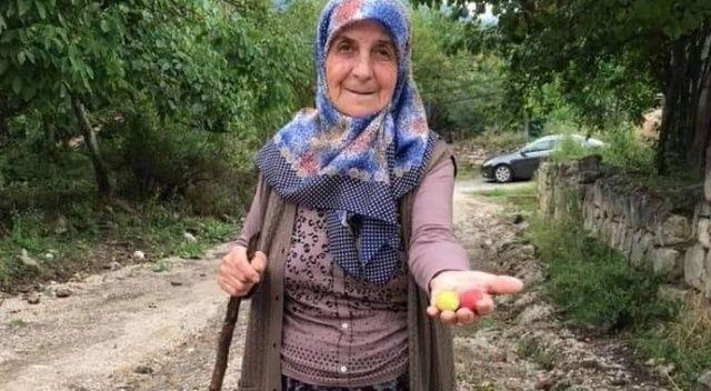 Yolcu minibüsünün çarptığı yaşlı kadının kimliği belli oldu