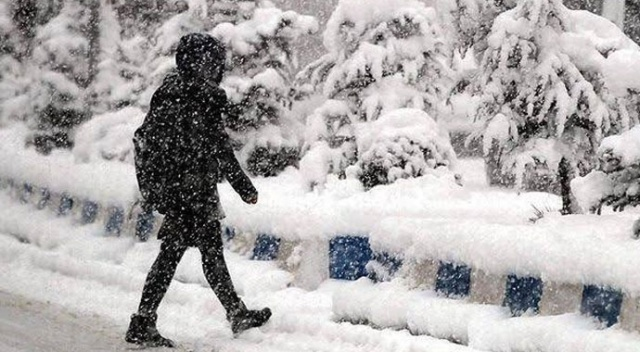 Doğu Karadeniz'de kar esareti! 169 köy ve mahalle yolu ulaşıma kapandı