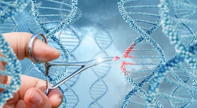 Gen teknolojisi için yol haritası
