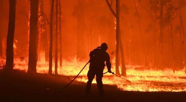 Ukrayna: Avustralya, yangın için yaptığımız teklifi geri çevirdi