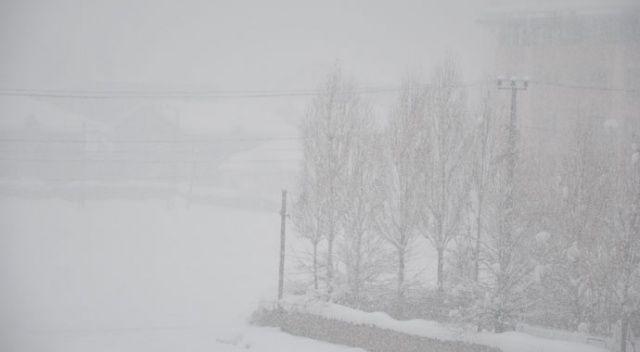 Yoğun kar yağışı ve sis hayatı olumsuz etkiliyor