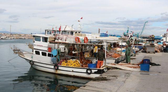 İzmirli balıkçılar: Mültecileri adalara seve seve taşırız