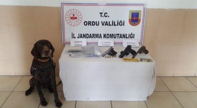 Ordu'da uyuşturucu operasyonu: 4 gözaltı