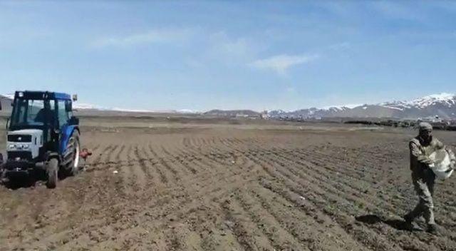 Güvenlik korucuları yaşlı adamın tarlasını sürüp ekim yaptı