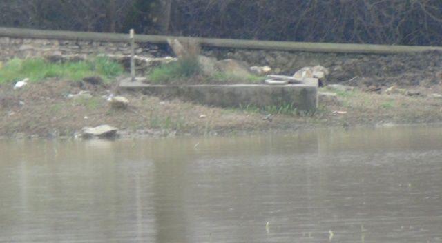 Sular tekrar yükseldi, mezarlar sulara gömüldü