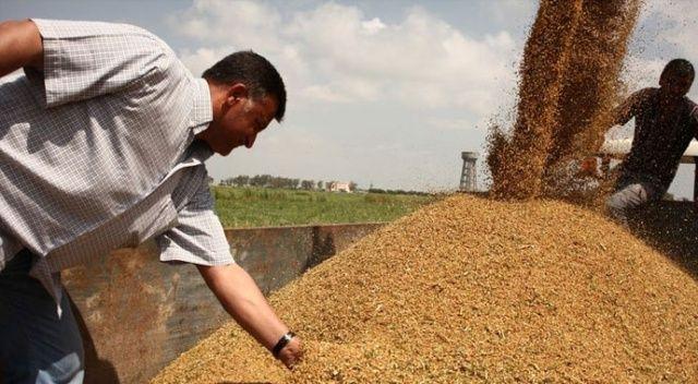 'Buğday alımı bayram sonrası'