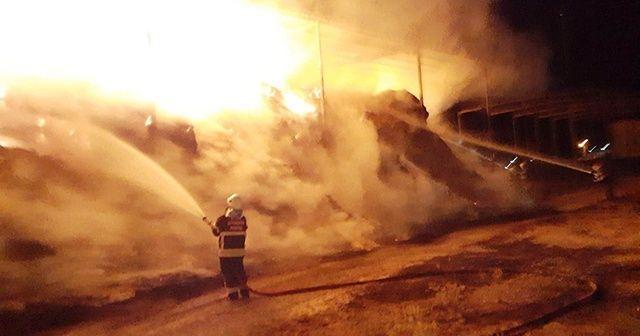 Aydın'da bir çiftlikte yangın çıktı
