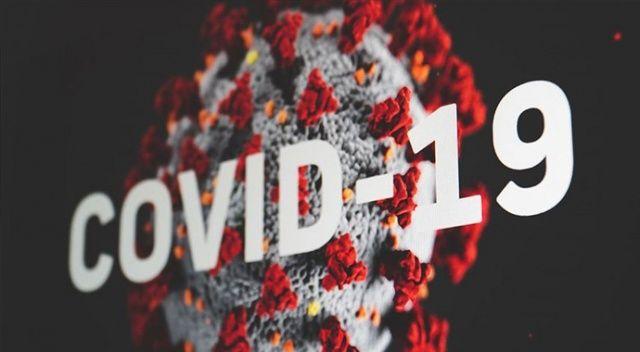 Dünya Sağlık Örgütü: Kovid-19 da çiçek hastalığı gibi küresel bir dayanışma sınavı