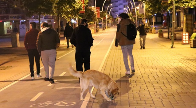 Kısıtlama bitti, sokağa akın ettiler