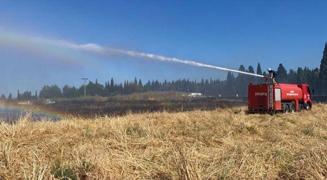 Tarım arazisinde yangın