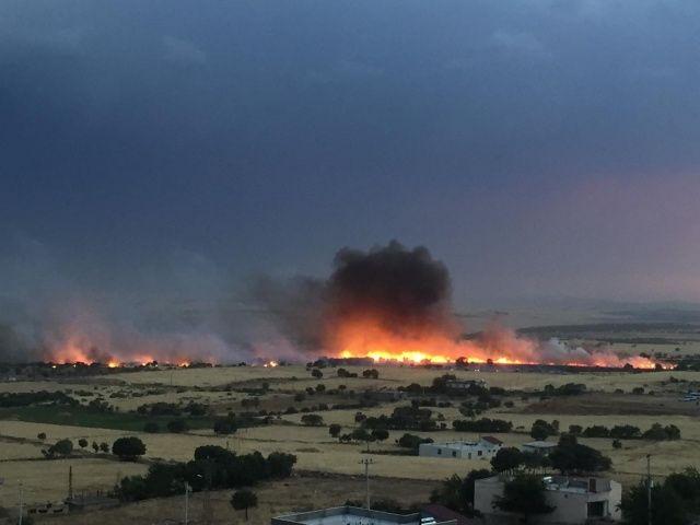 Diyarbakır'da 300 dönümlük ekili arazi küle döndü