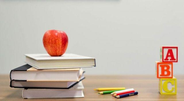 MEB okul öncesi çocuklara yaz okulları açacak