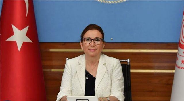 Ticaret Bakanı Pekcan: Türk Eximbank 380 milyon euro kredi sağladı