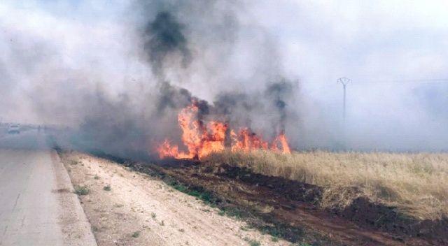 YPG, tarlaları yakıp  köylüleri öldürüyor