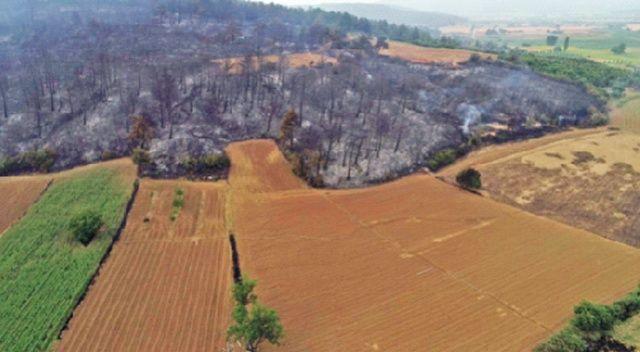450 hektarla kurtardık