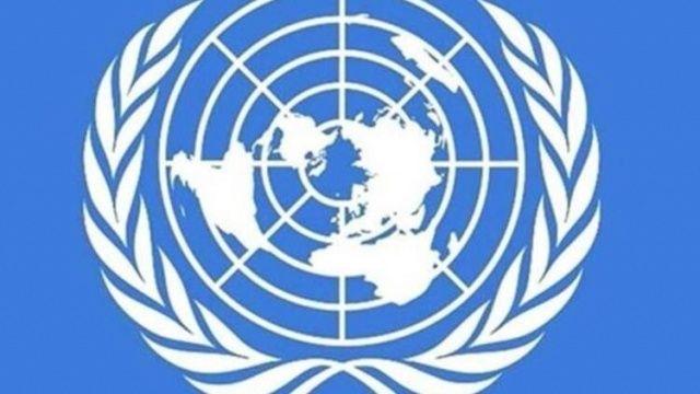 Birleşmiş Milletler'den İdlib'e 71 tır insani yardım