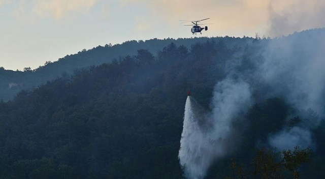Çanakkale'de orman yangını 19 saat sonra kontrol altına alındı