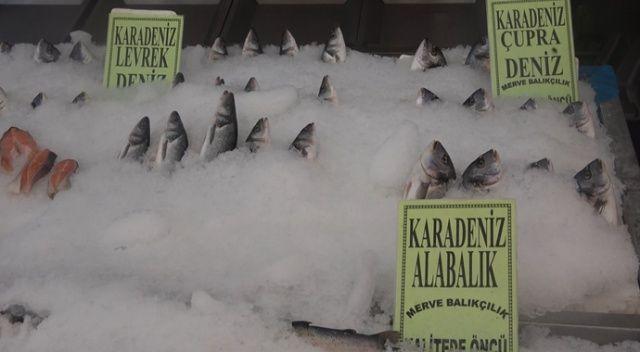 Koronavirüs balık satışlarını artırdı, en çok levrek ve çipura tüketiliyor