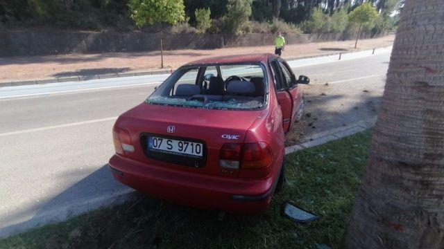 Otomobil palmiyeye çarptı: 3 yaralı