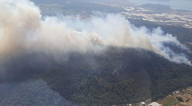 4 ilde 5 noktada orman yangını