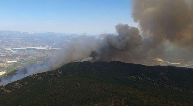 Aydın'da başlayıp Muğla'ya ulaşan orman yangını kontrol altına alındı