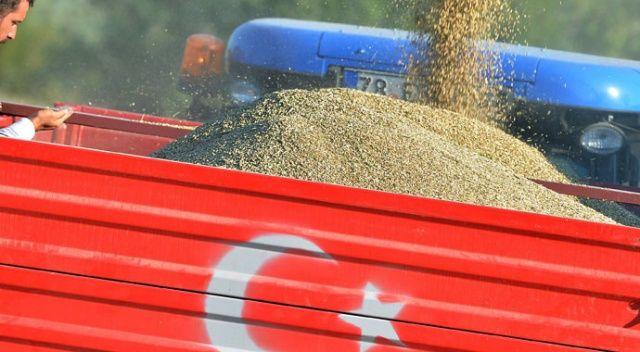 Buğday stokçusuna TMO engel olacak