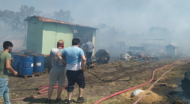 Bursa'da çiftlikte çıkan yangın ormana sıçradı: 20 küçükbaş telef oldu